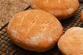 Pan de horno (Real Spanish Bread)