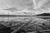 Black and white image near the Grand Prismatic Spring in Yellowstone National Park in Wyoming.
