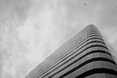 Bird and building in Seattle, Washington in black and white
