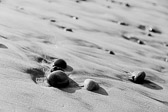 Stones washed up on the beach in the San Diego, California area.