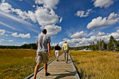 Walking along the trails at the Upper Geyser Basin area next to Old Faithful
