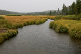 Rain falling on a stream in Yellowstone National Park in Wyoming